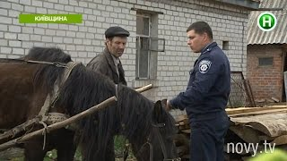 В селе под Киевом мучают и закапывают животных - Абзац! - 21.04.2016