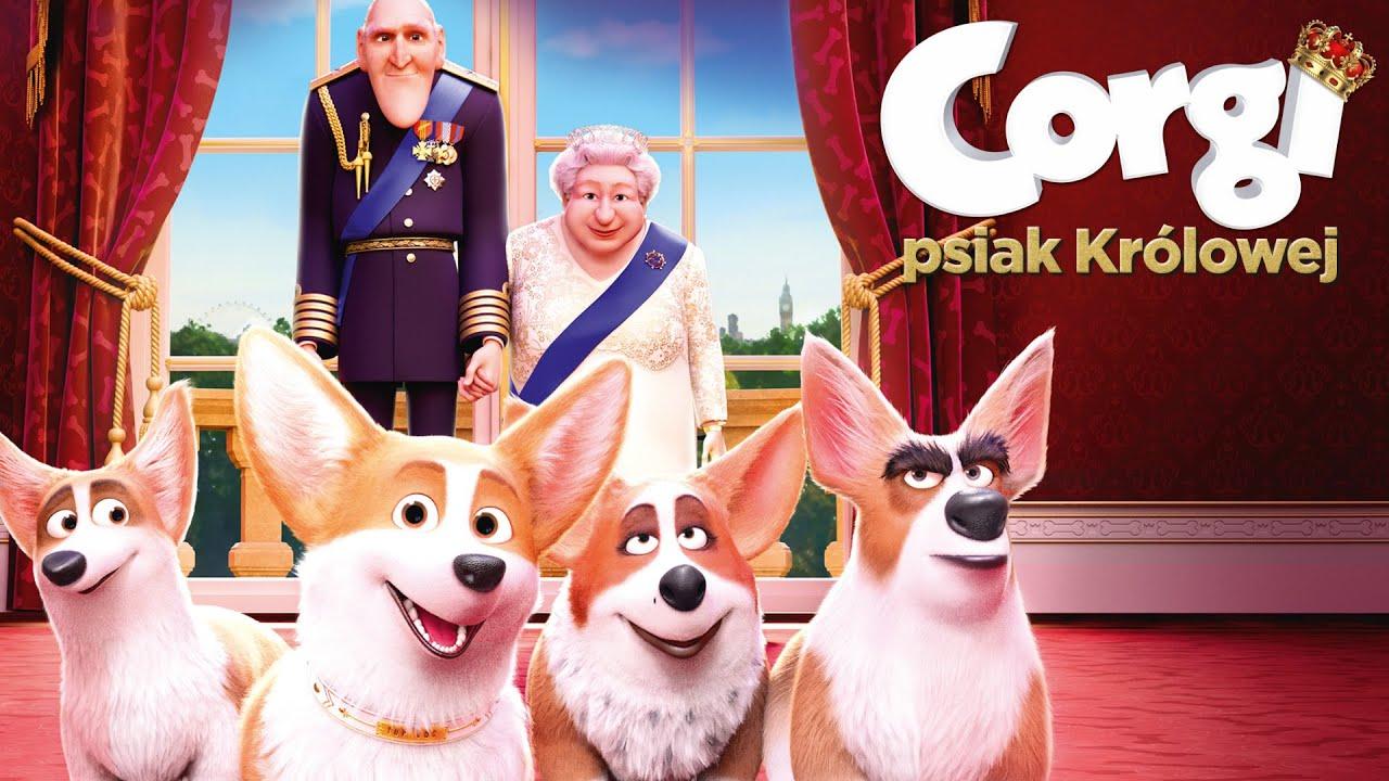 CORGI, PSIAK KRÓLOWEJ - zwiastun PL (premiera: 1 marca 2019)