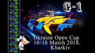 Международный турнир по тхэквондо ВТФ «Ukraine Open Cup 2018». 1 день.