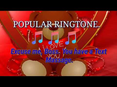 Excuse me boss you have a text massage ringtone.