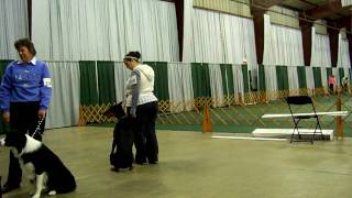 Engagement Exercises - Akc Obedience Trial 1/2010