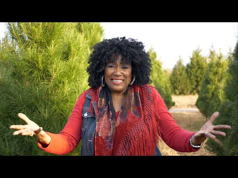 image for Soulful Christmas feat. Dorothy Morrison w/Billy Fairfield & Friends