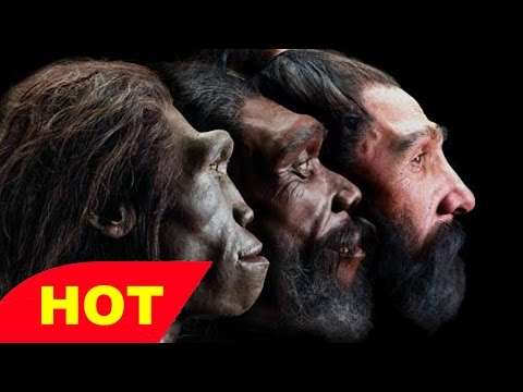 NOVA   THE EVOLUTION OF SIZE   Discovery Science Animals full documentary
