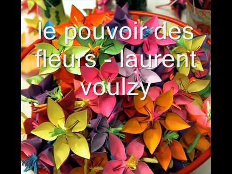 Le pouvoir des fleurs 6 ème chanson de l'album