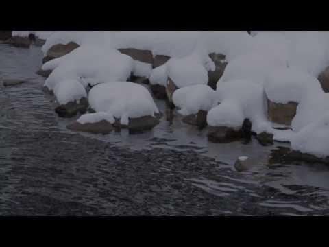 Impacts des sels de voirie sur les ressources en eau