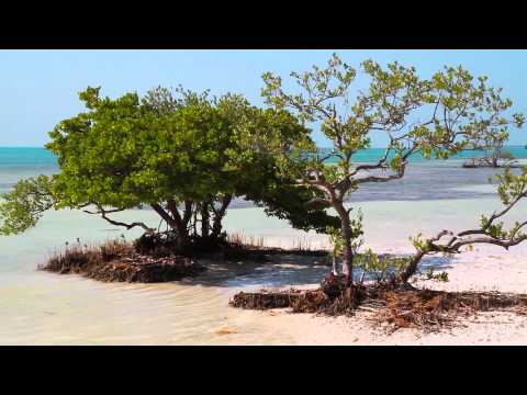 Islamorada - The Village of Islands