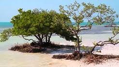 Islamorada - The Village of Islands
