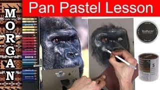 Pan Pastel - Pastel Pencil Lesson / Tips (wildlife art)