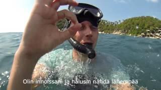 Haita etsimassa thaimaassa (Shark diving thailand)