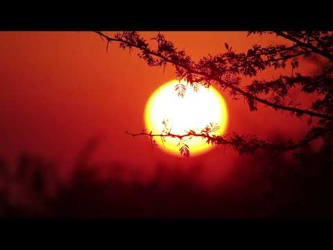 [HD] Soft Spoken Relaxing Binaural Sounds from YouTube · Duration:  14 minutes 42 seconds