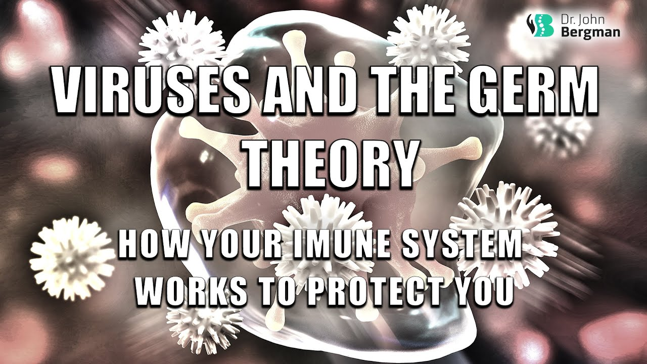Viruses and the Germ Theory - How your Immune System Works to Protect You 2020