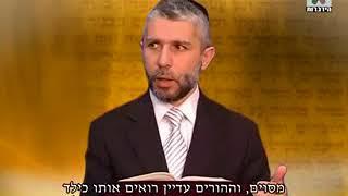 פרשת וילך   הרב זמיר כהן