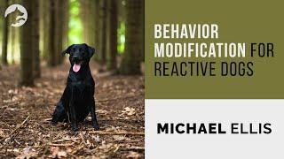 Behavior Modification for Reactive Dogs  Michael Ellis