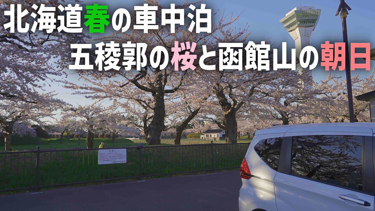 北海道春の車中泊旅【五稜郭の桜と函館山の日の出】ぱんちゃんなしの1泊2日