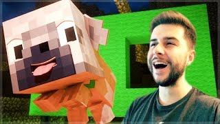 REACTING TO HOLE IN THE WALL MINECRAFT MOVIE! Minecraft Animations