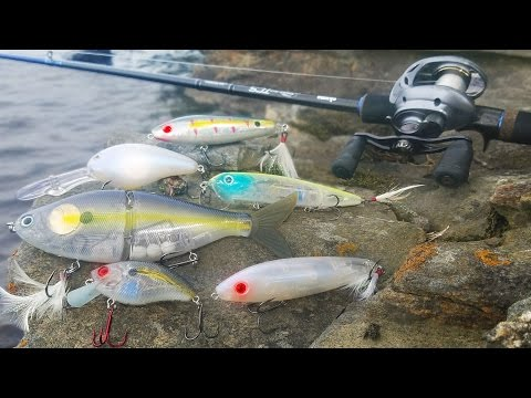 Fishing for Bass with Electronic Lures! - Canada (Livingston Lures)