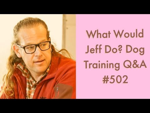 Dog whines on walks | Stop a dog from Barking | What Would Jeff Do? Dog Training Q & A #502