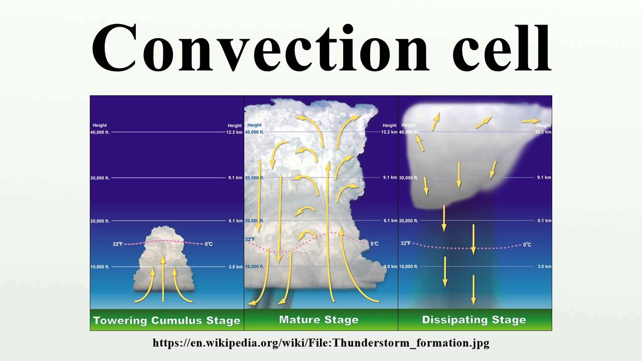 convective cell