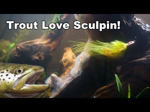 Sculpenstein Sculpin Streamer - Underwater Footage - McFly Angler Fly Tying