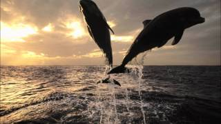 AKmusique - Ocean Drive 707