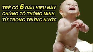 Trẻ Có 6 Dấu Hiệu Này Đảm Bảo Thông Minh Từ Trong Trứng Nước Con Ai Có Đủ Phước 3 Đời