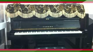 Shop nhạc cụ Piano, hàng nhập khẩu mới về 09468.369.68