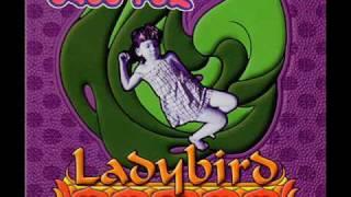 Baby Fox - Ladybird (Cujo Remix)(1996)