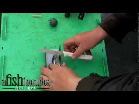 How-To Rig A Plug-Cut Herring For Salmon, Side-Cut