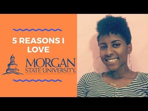 5 Reasons I Love Morgan State University 💙🐻