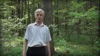 Троицкого леса скоро не будет?