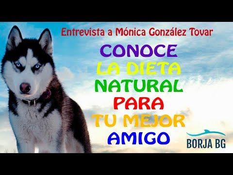 Entrevista a Mónica González Tovar, especialista en Dieta Natural para perros y gatos, DIETA BARF.