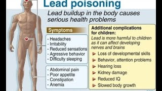 LPPT: Symptoms Associated with Lead Poisoning (Ep. 20 of 23)