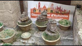 Le Giornate FAI d'autunno 2018 a Giovinazzo (BA)