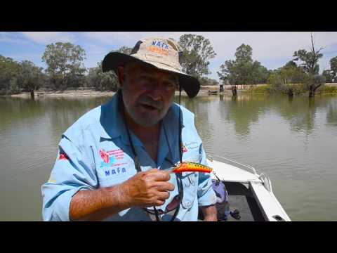 MONSTER MURRAY COD ACTION WITH CODMAC AND AJ