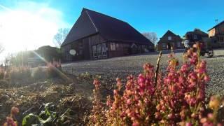 Sonnige Wintertage auf dem Bauernhof Presener Deichkrone