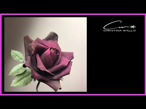 Black Sugar Rose: Super Quick 15 Petals Only