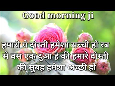 Hamari Ye Dosti Hamesha Sachi Hoo... | Good Morning Shayari | Good Morning Messeges