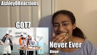 Cover images GOT7 Never Ever Dingo Reaction