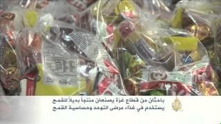 باحثان من غزة يصنعان منتجاً بديلاً للقمح