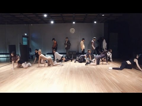 WINNER - REALLY REALLY Dance Practice (Mirrored)