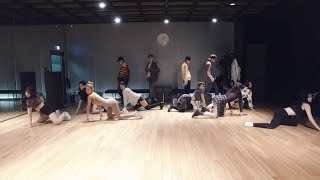 WINNER - REALLY REALLY Dance Practice (Mirrored)