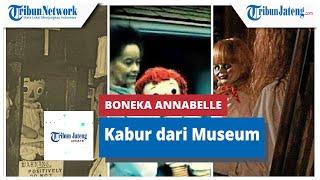 Heboh Boneka Annabelle Disebut Kabur dari Museum