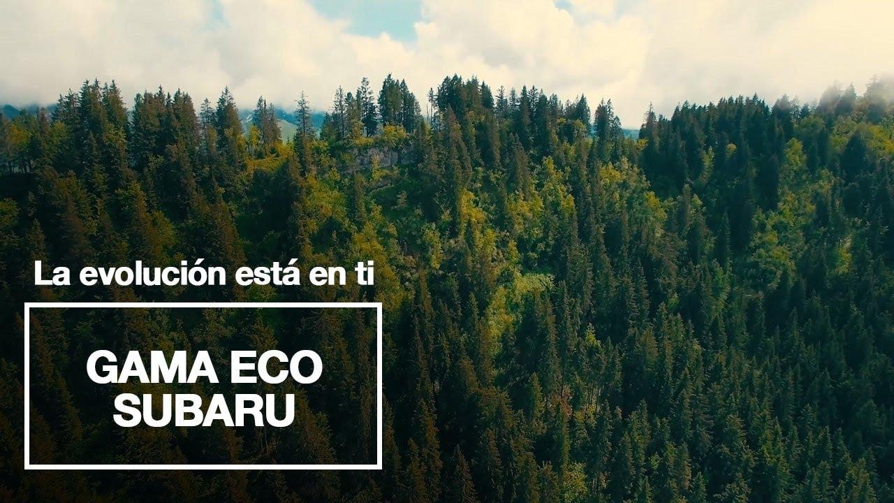 Subaru | Gama Subaru ecoHYBRID, la evolución está en ti