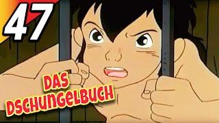 DIE FLUCHT  Das Dschungelbuch  Deutsch  Folge 47  The Jungle Book