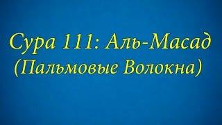 Ахьмад Гулиев Сура 111: Аль-Масад (Пальмовые Волокна)