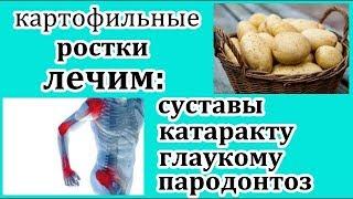 Лечение картофельными ростками.Народные рецепты.