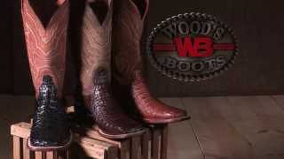 Lucchese genuine caiman gator boots at Wood's Boots