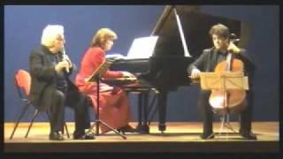 Mendelssohn Trio op.49 - Finale. Allegro assai appassionato. - Angelo Persichilli, flauto