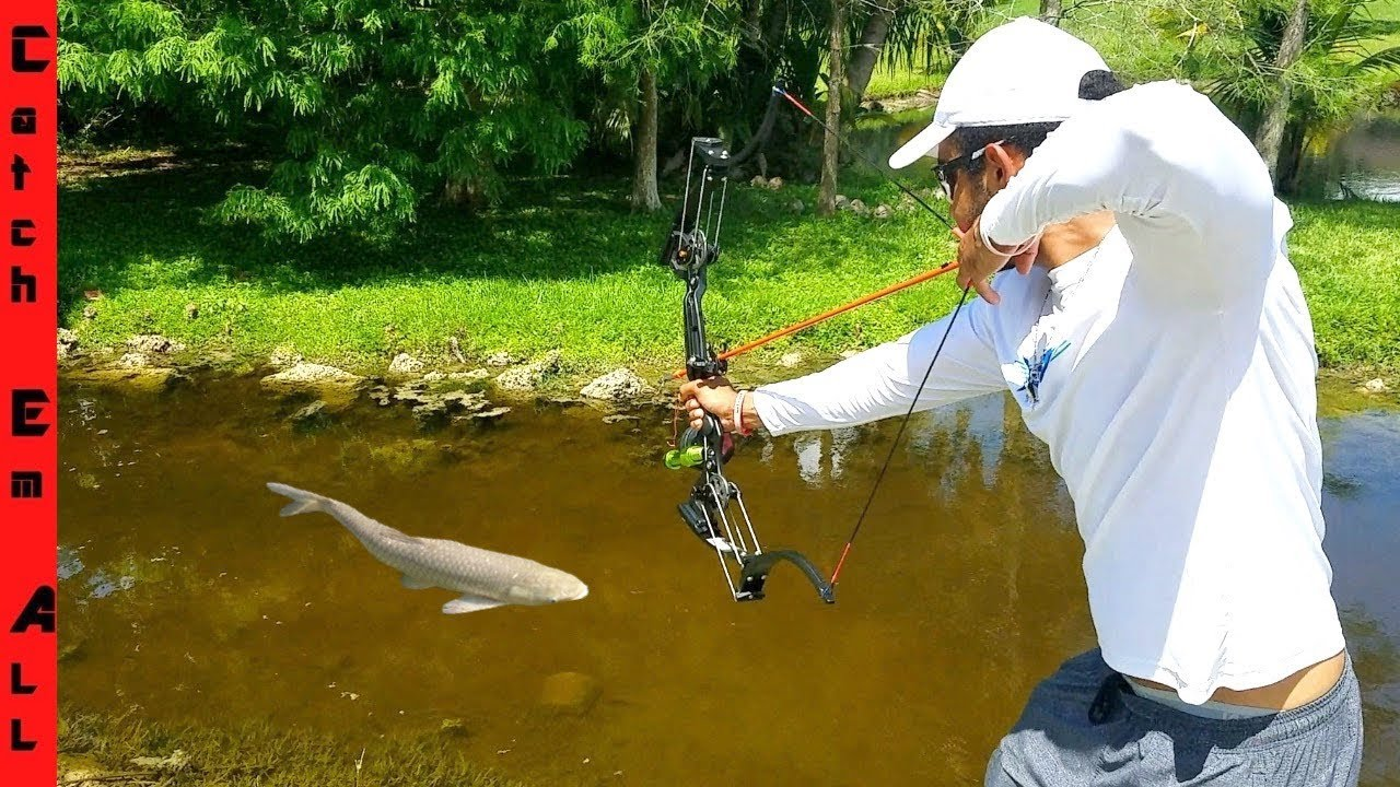 BOWFISHING for INVASIVE FISH with New HIGH-TECH BOW!