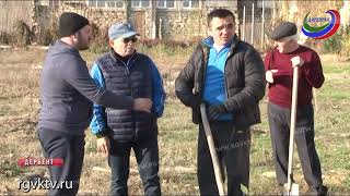 Медработники Дербента заложили основу новой парковой зоны в городе